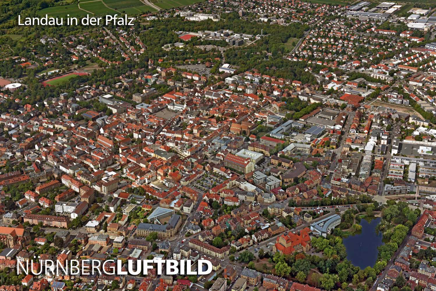 Single landau in der pfalz